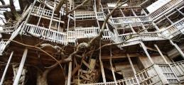 Dünyanın en ilginç ve büyük ağaç evleri