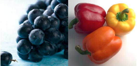 katkı maddeli yiyecekler
