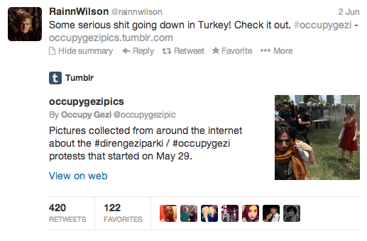 rainn wilson occupygezi