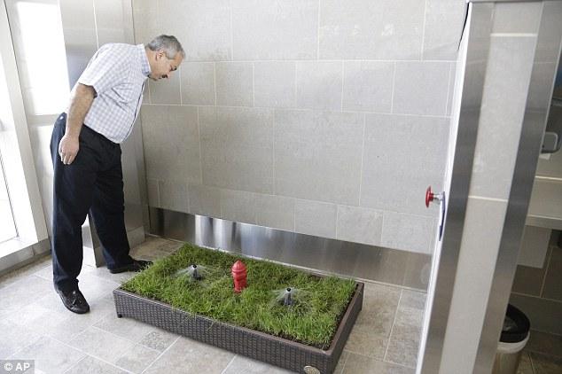 kopek-tuvaletleri-